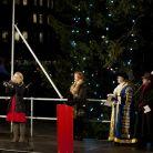 Tine Thing Helseth performs at Trafalgar Square Christmas tree lighting ceremony