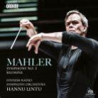 ODE1264-5. MAHLER Symphony No 1. Blumine
